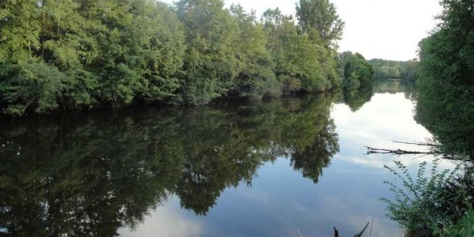 Rivière typique de l'habitat du silure