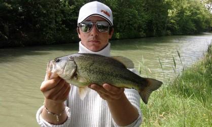 Black Bass au leurre souple