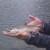 Saumon de fontaine pris en lac de montagne