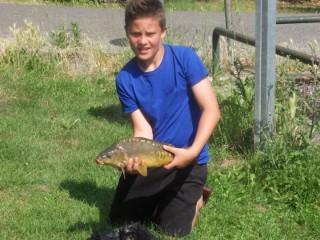 Une petit carpe de l'étang de La Laque à Lherm