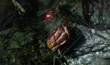 Magret au feu de bois